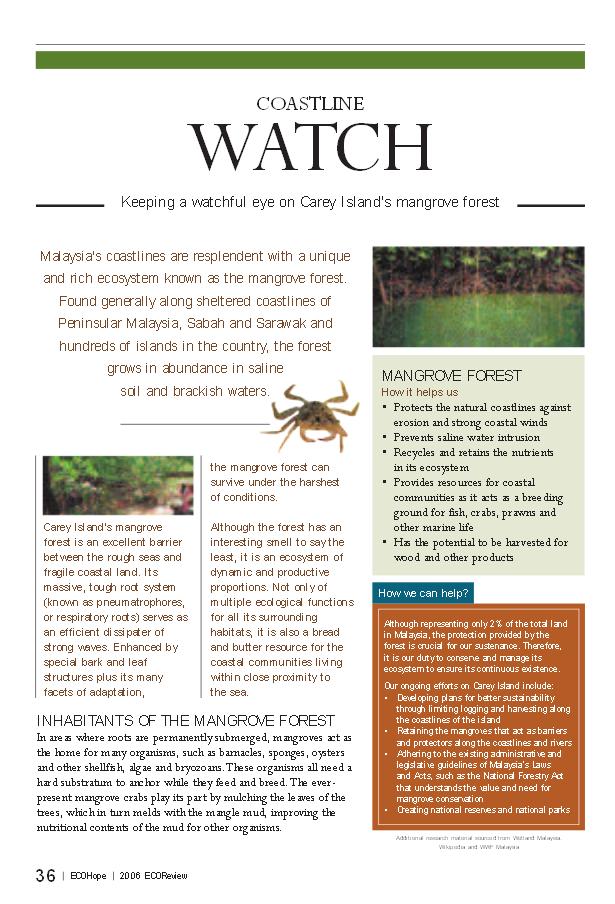 ecohope mangrove